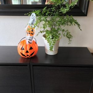 halloweenunnamed
